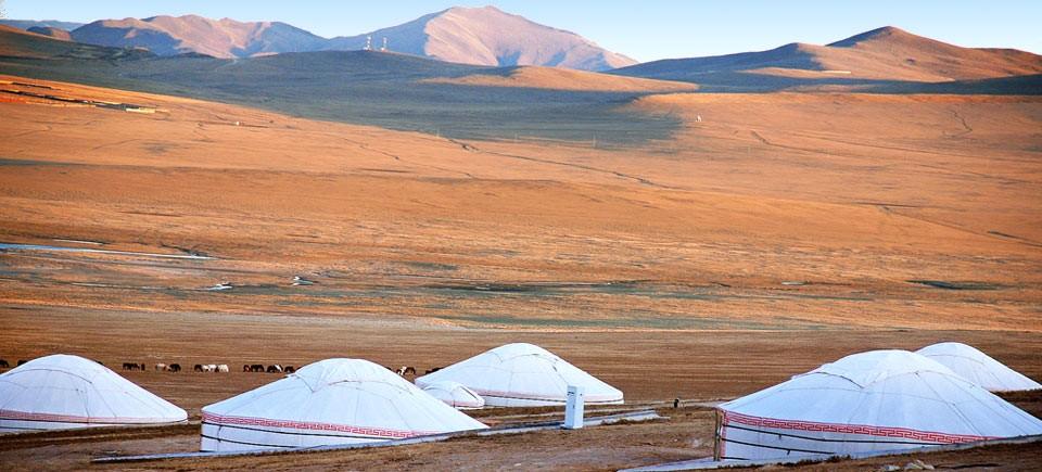 Tra Puglia e Mongolia